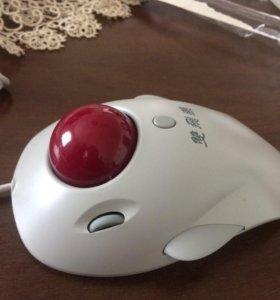 Мышь-трекбол