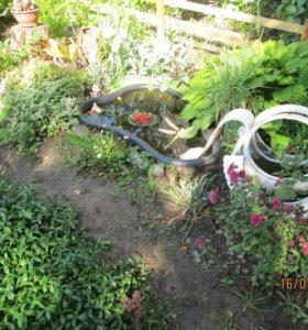 Продам сад в Октябрьском районе