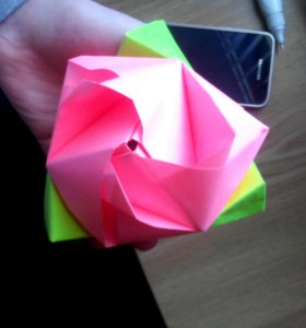 Роза-куб