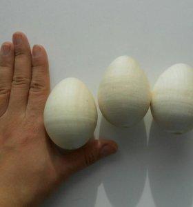 Яйца для росписи