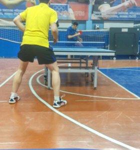 Занятия по настольному теннису