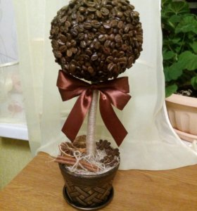 Кофейное деревце. Ишеевка