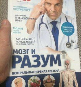 Книга ,,Мозг и разум,,новая 62стр.