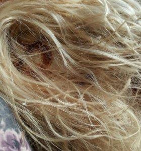 Натуральные блондинистые волосы