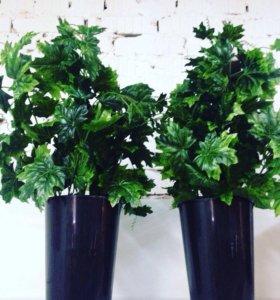 Зелень в кашпо 50 см
