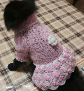 Вязаная одежда для собак ручной вязки