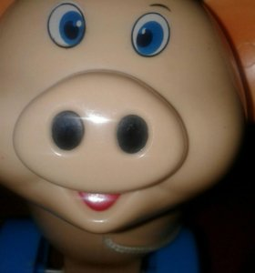 Продам свинку развивайку