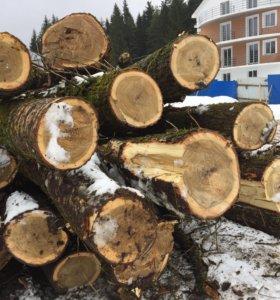 Дерево необработанное