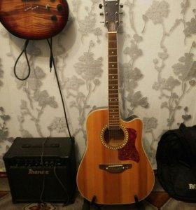 Акустическая гитара Trembita Leoton
