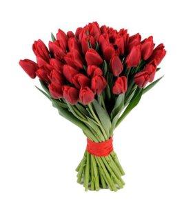 15 бордовых тюльпанов
