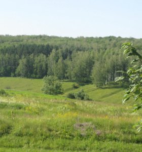 Земельный участок (5 км. до города)