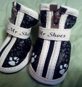 Обувь для собаки. 4