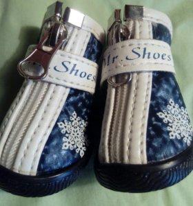 Обувь для собаки. 2