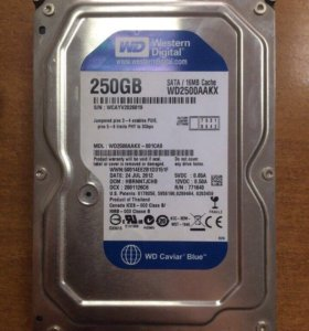 WD Blue 250 Гб, 16Mb(SATA)