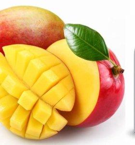 Mango Manga Montale