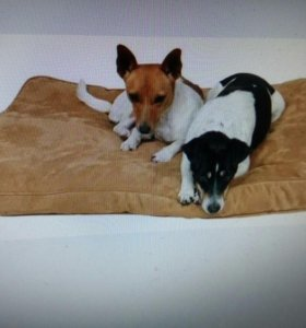 Лежак для собаки или кошки