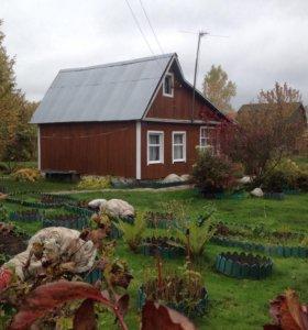 Дача, участок с домом