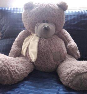 Медведь Теди.