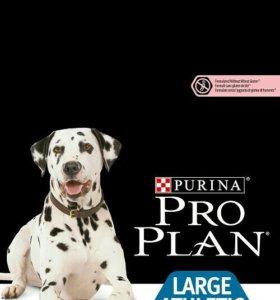 Корм ProPlan OptiDerma для взрослых собак крупных
