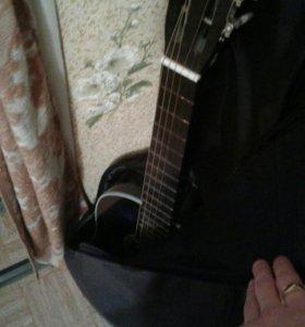 Гитара с зимнем чехлом