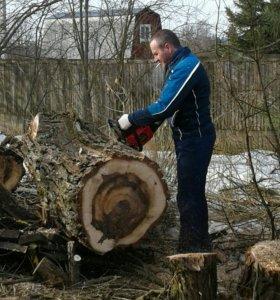 Перепилка дерева на дрова
