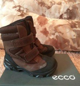 Ботинки ECCO экко