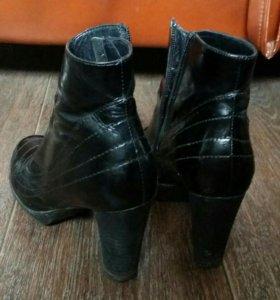 Ботинки( натуральная кожа)