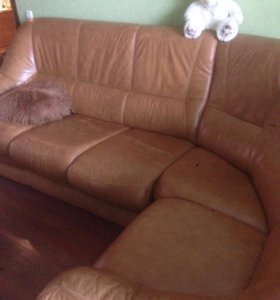 Угловой диван (кожа)