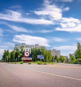 Сдается квартира 55 кв.м. г.Куровское