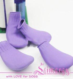 Резиновые носочки для собак в дождливую погоду