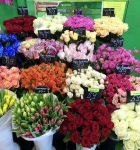Цветы 🌺