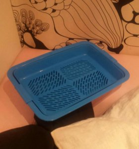 Туалет лоток для котенка