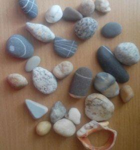 Камни)
