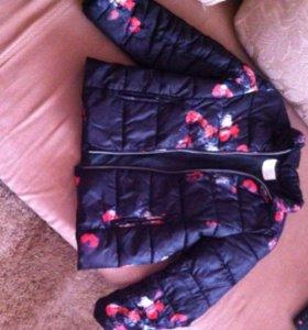 Куртка и жилетка демисезонные