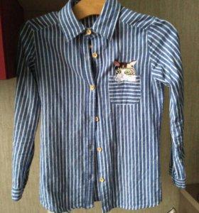 Синяя рубашка в полоску с котом