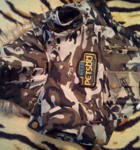Курточка для собаки маленькой породы.