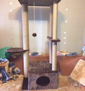 Новый комплекс для котов