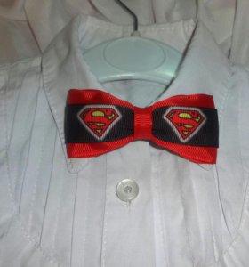 "Бабочка-галстук ""Супермен"""