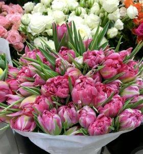 Тюльпаны из коллекции Don Marino