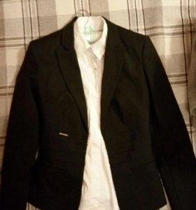 Пиджак и блузка