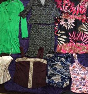 Блузки, туники, топы, брюки, шорты 42-44-46