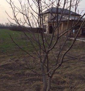 Земельный участок х. Примаки