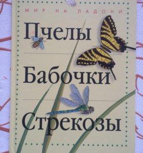 «Пчёлы. Бабочки. Стрекозы»