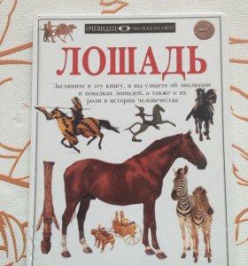 Книга о лошадях