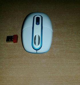 Мышь для компъютера