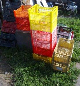 Ящики пластмасовые