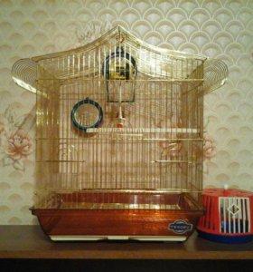 Клетка и переноска для птиц