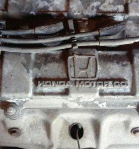 Двигатель на хонда домани, интегра с акпп в сборе