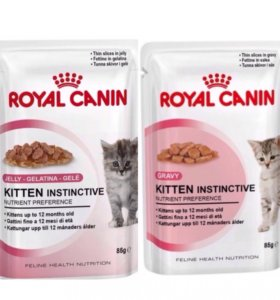 Паучи для котят Royal Canin