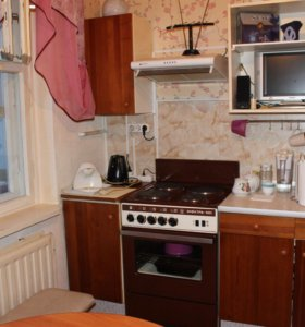 1-комнатная квартира на Древлянке